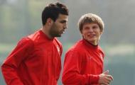 Cựu sao Arsenal: 'Fabregas là đồng đội tốt nhất của tôi tại Pháo thủ'