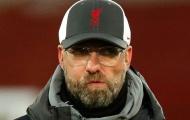 Van Dijk chấn thương, Paul Merson chỉ ra cái tên không thể thay thế của Liverpool