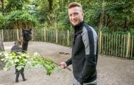 Chấn thương, hai 'anh đại' Dortmund rủ nhau vào sở thú