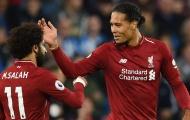 'Van Dijk và Salah mà chấn thương thì Liverpool phá sản'