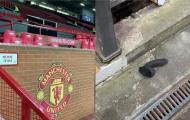 SỐC! CĐV vứt bỏ 'đồ chơi tình dục' ở Old Trafford sau trận thắng West Ham