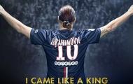 Zlatan Ibrahimovic là ông vua Le Classique