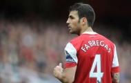 Tập buổi đầu cùng Arsenal, Fabregas đã khiến một đàn anh 'phiền lòng'