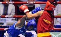 Boxing: Tuyển nữ ra quân thành công